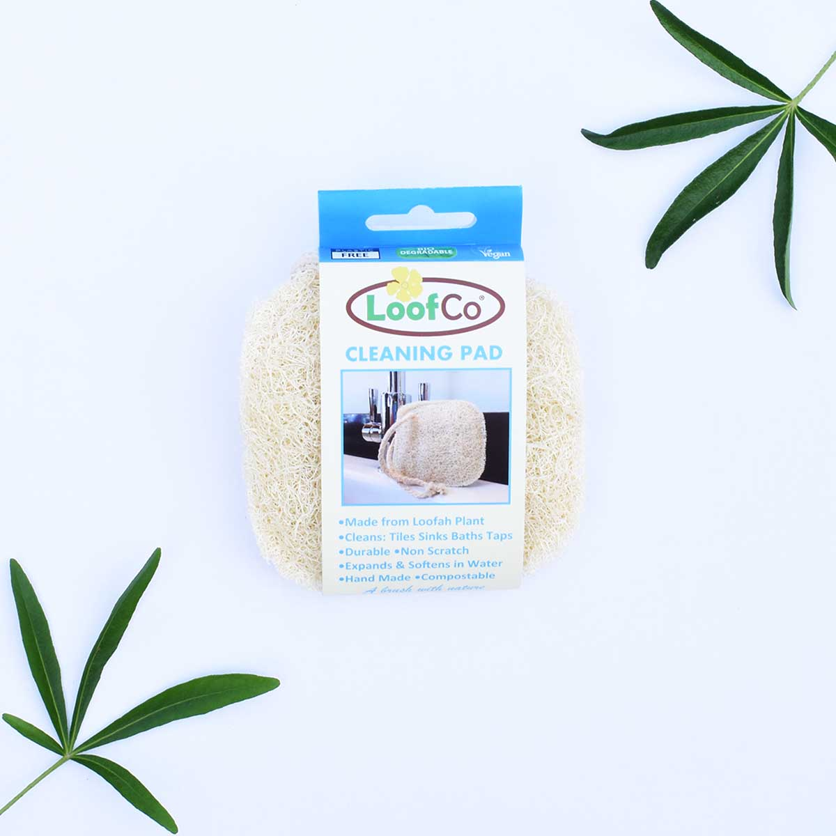 Cleaning Pad | LoofCo.