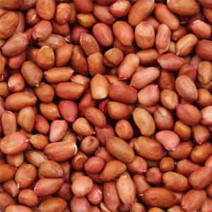 Peanuts | Organic