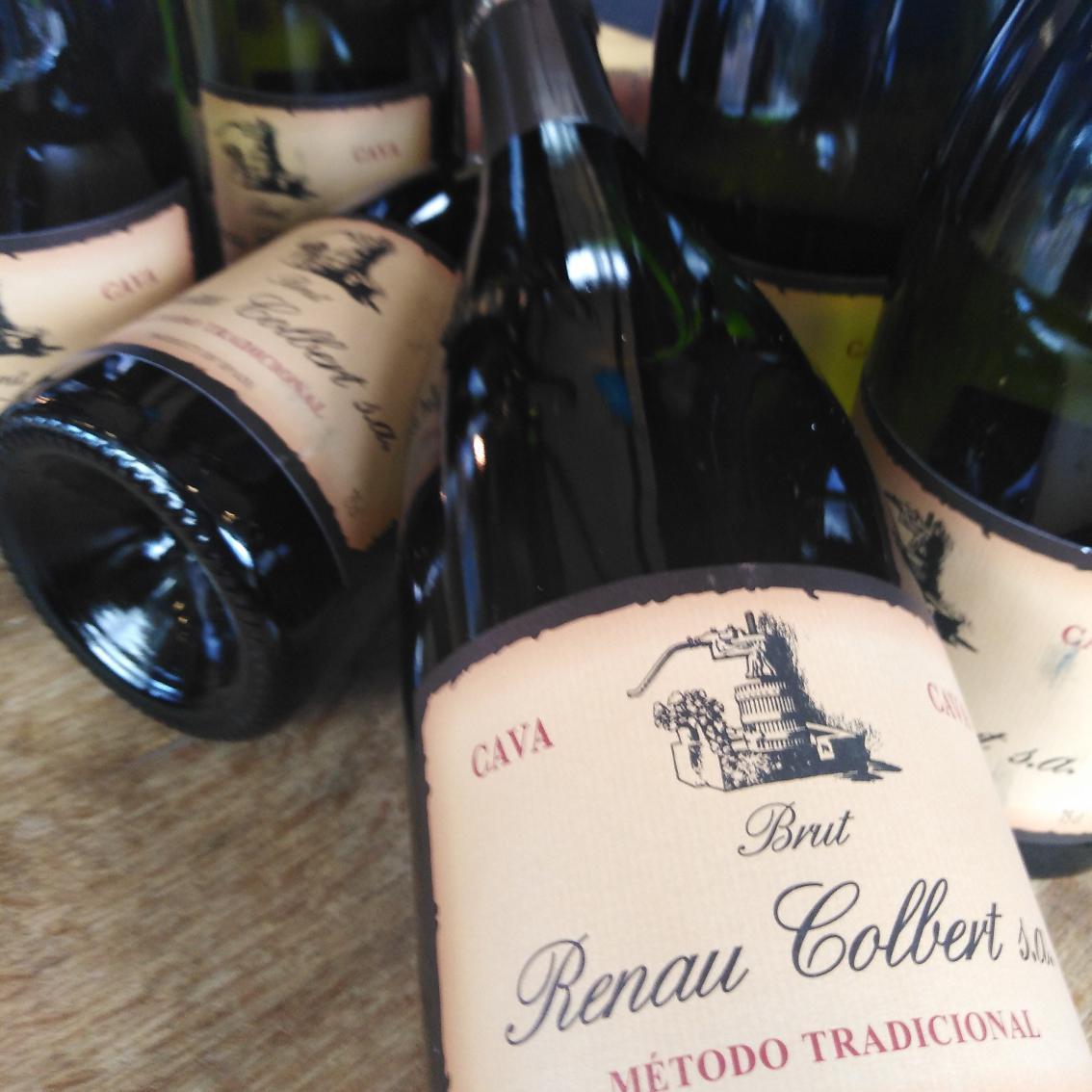 6 flasker Cava Brut - Renau Colbert
