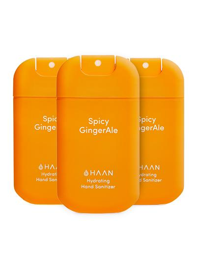 Haan - Handdesinfektion Spicy Gingerale