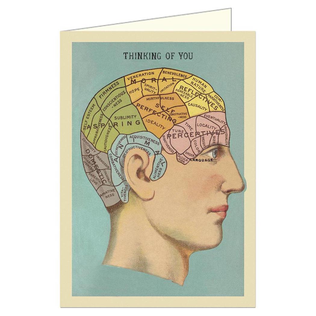 Cavallini Papers - Vykort Hjärna