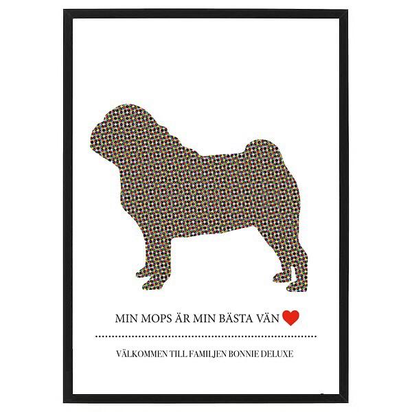 Lilla Rosa - Designa din egen poster