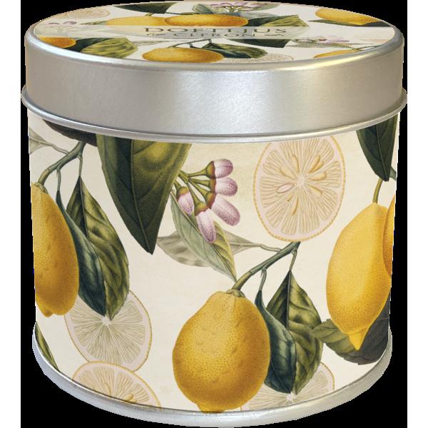 Sköna Ting - Doftljus Citron