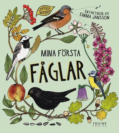 Bok - Mina första fåglar