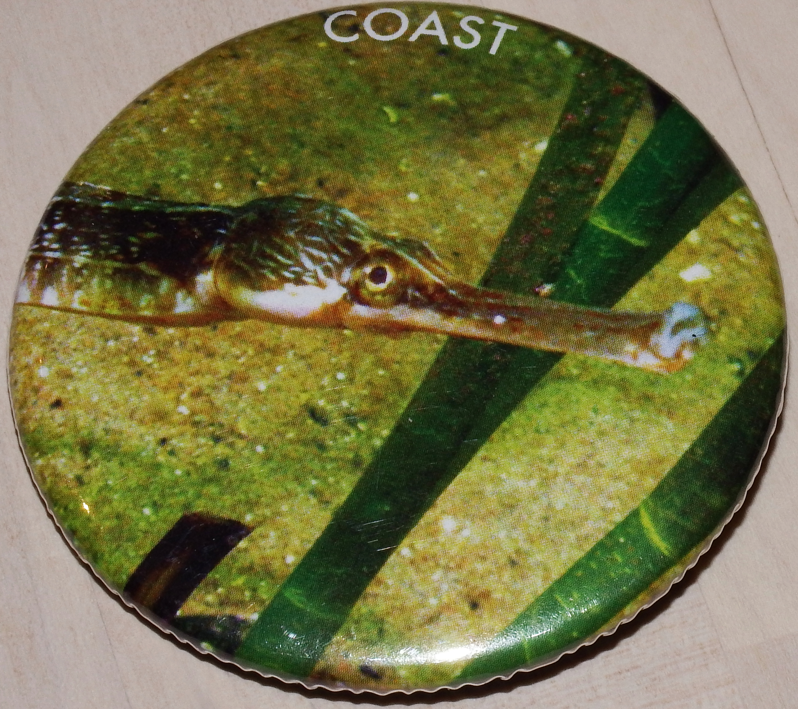 Badge - Pipefish