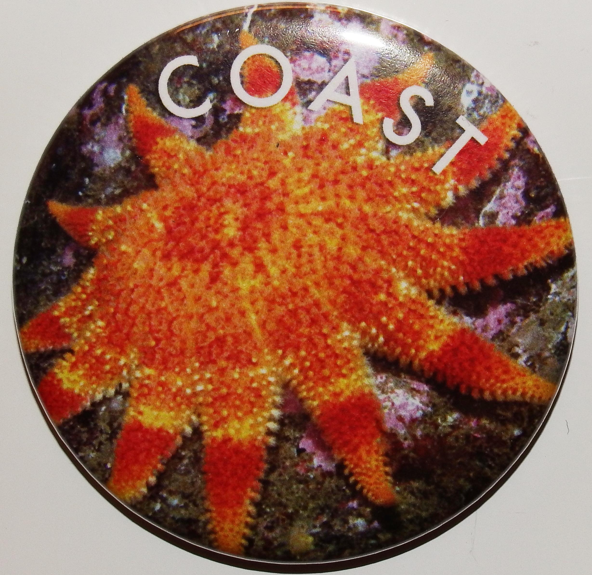 Magnet - Sunstar