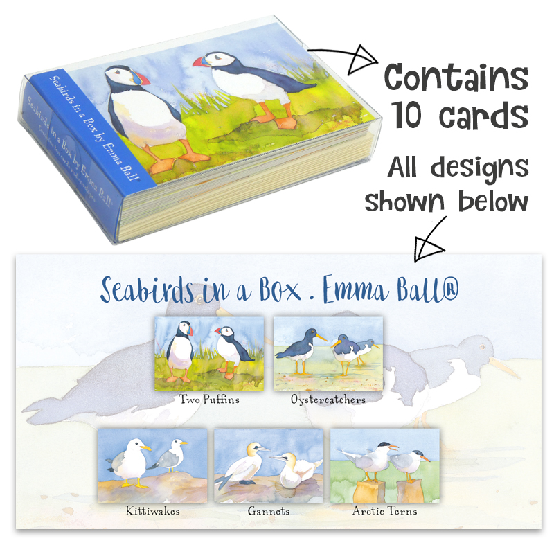Seabirds Boxed Notecards