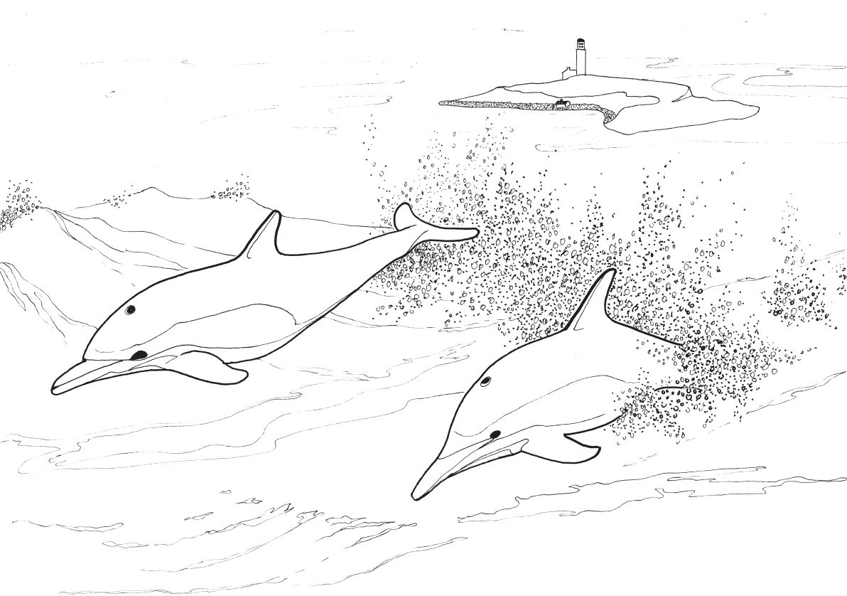 Arran Underwater Adventure Story and Colouring Book