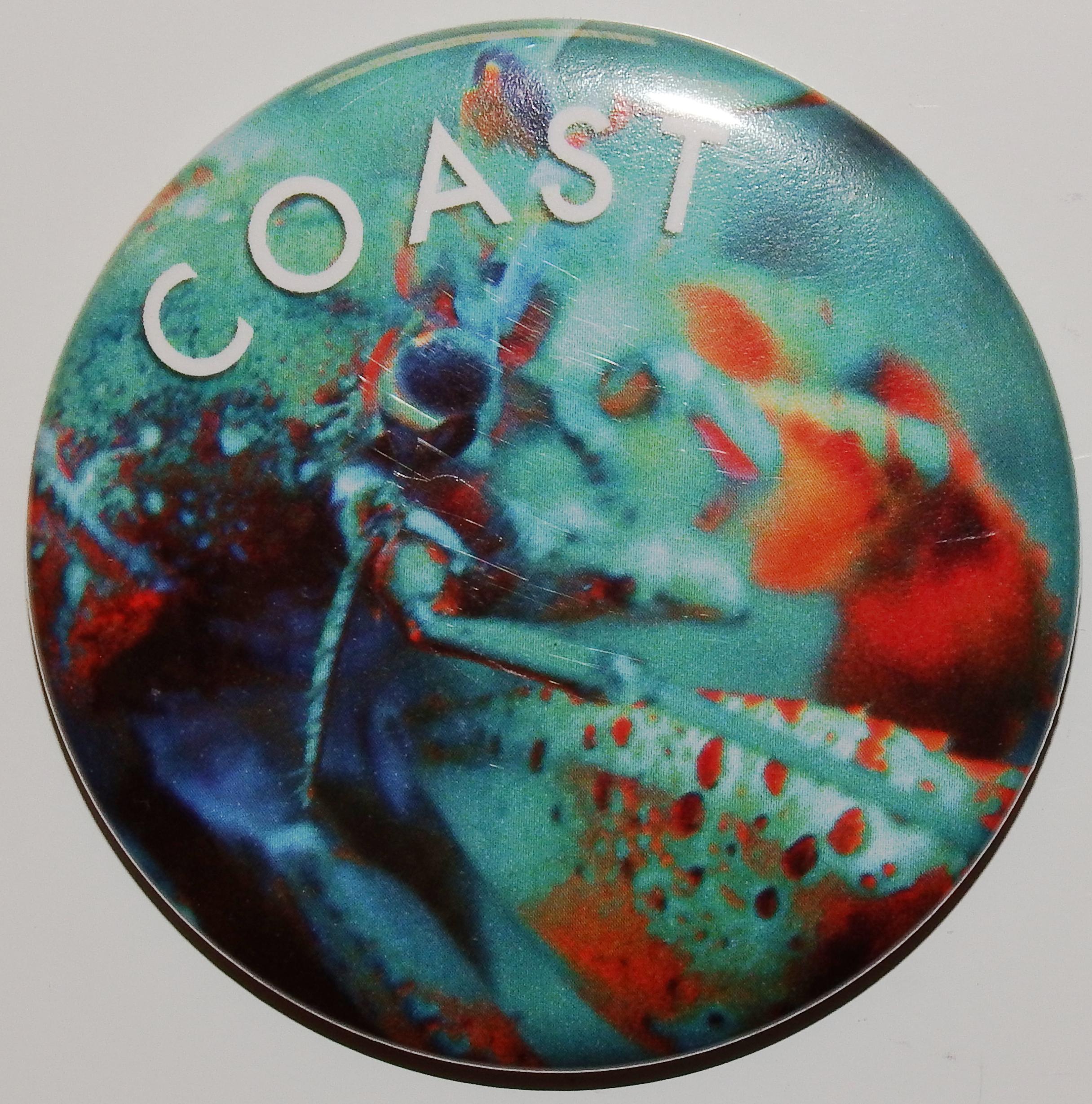 Magnet - Hermit crab