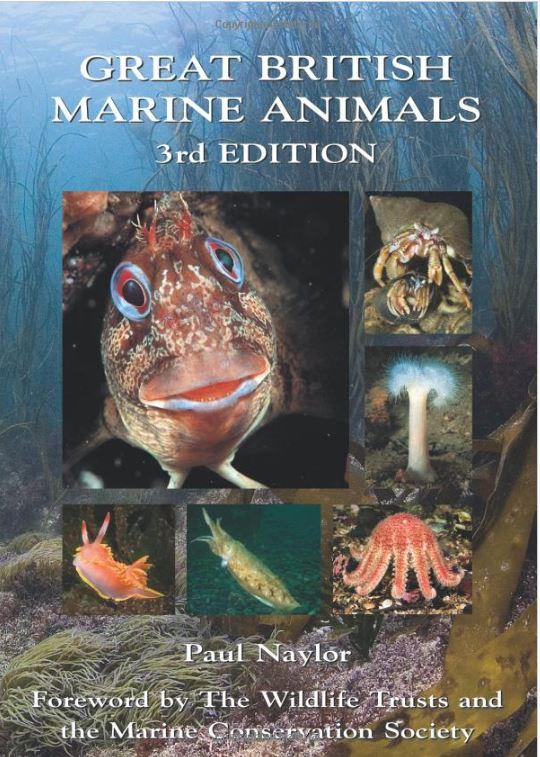 Book - Great British Marine Animals