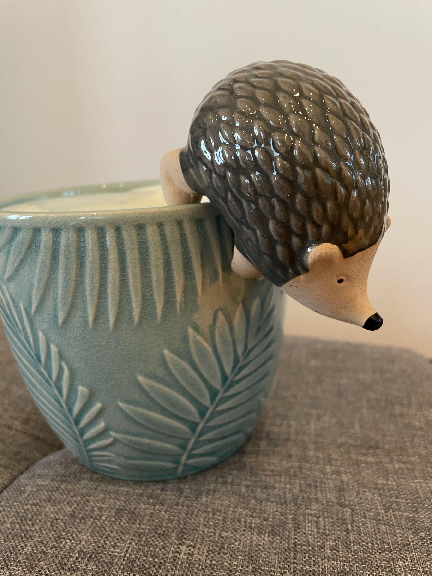 Stoneware Hedgehog Plant Pot  Hanger