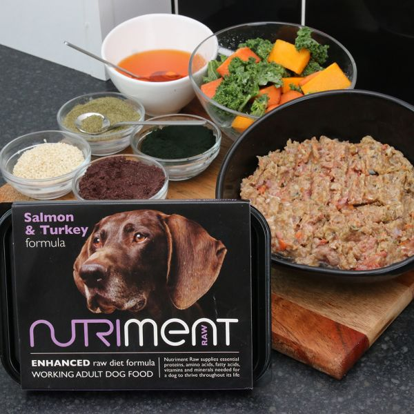 Nutriment Salmon & Turkey Formula