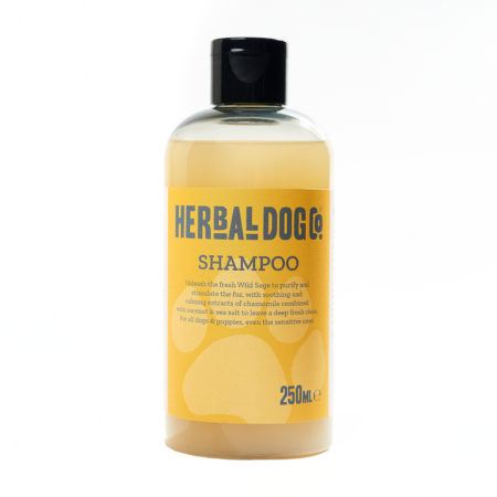 HDCo. All Natural Shampoo