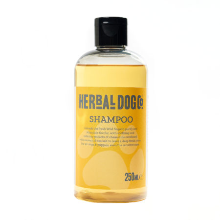 HDCo. All Natural Shampoo