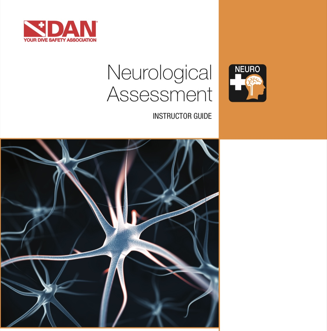 DAN Neurological Assessment
