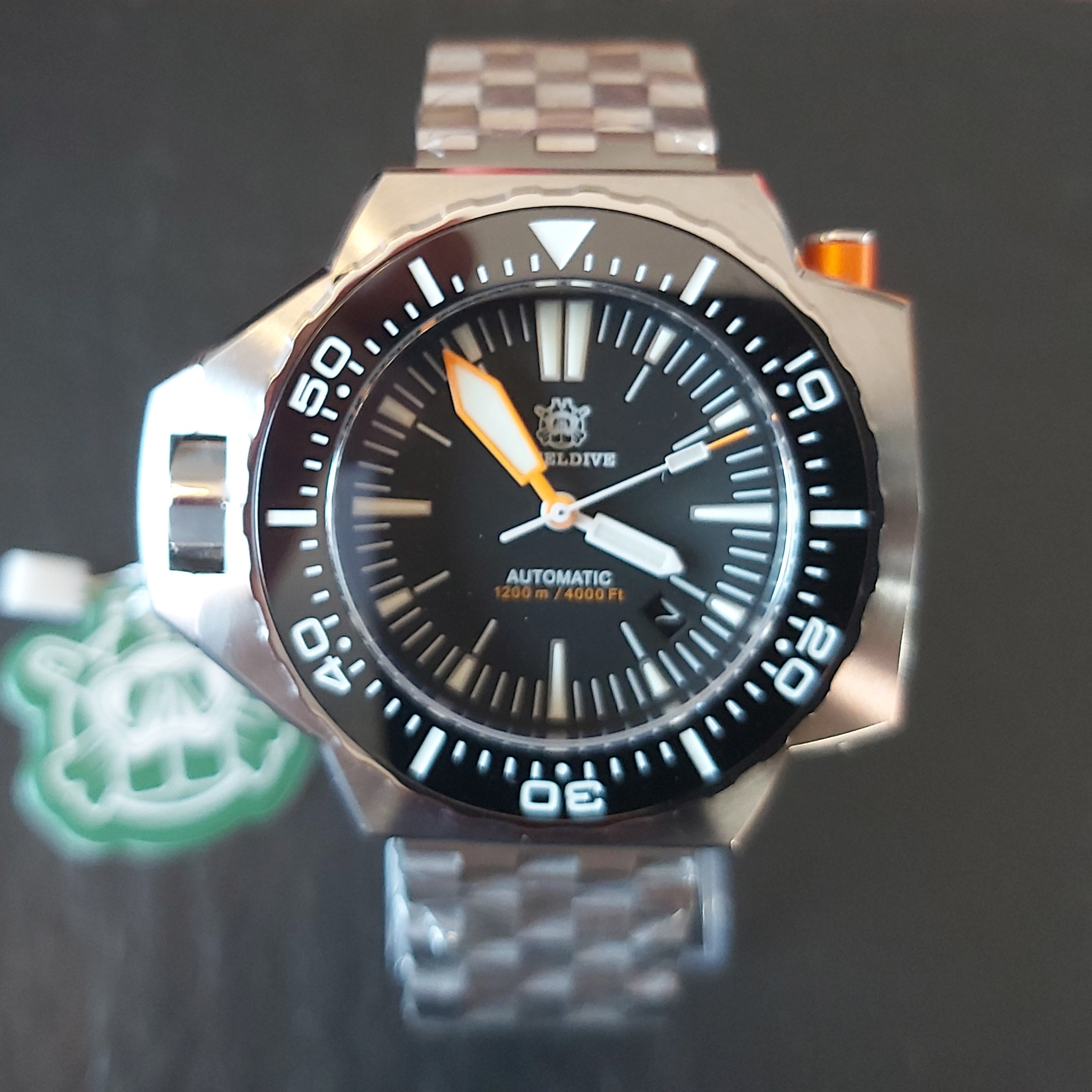 "Steeldive SD1969 1200M Watch - The ""PLOPROF"" Homage"