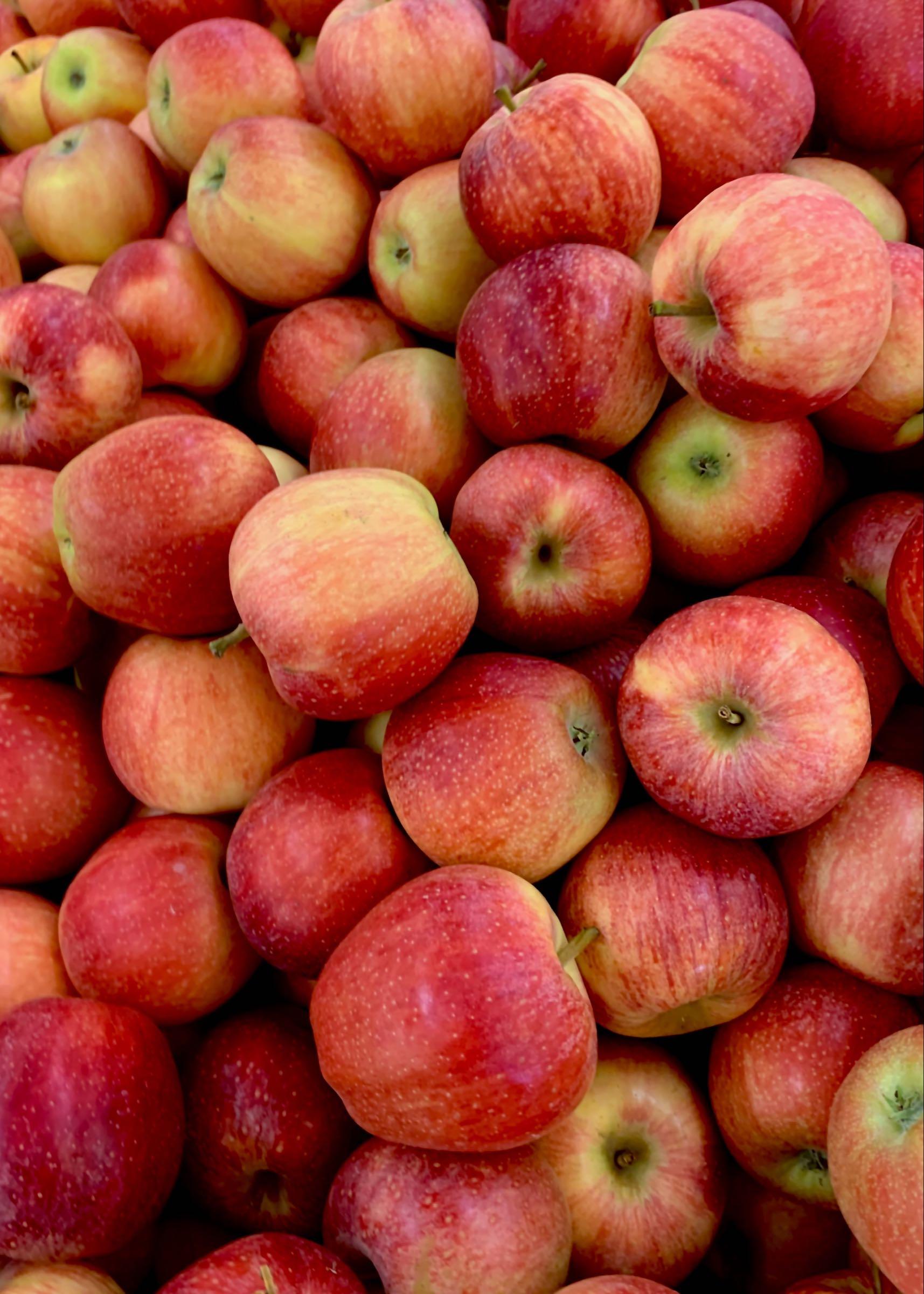 1kg Red Apples