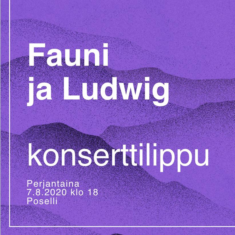 Konserttilippu FAUNI JA LUDWIG 7.8.2020