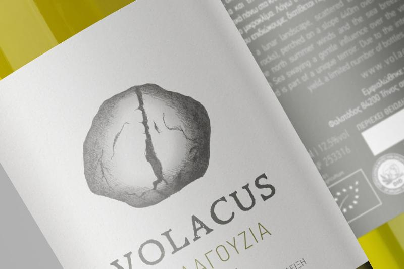 Volacus 2017