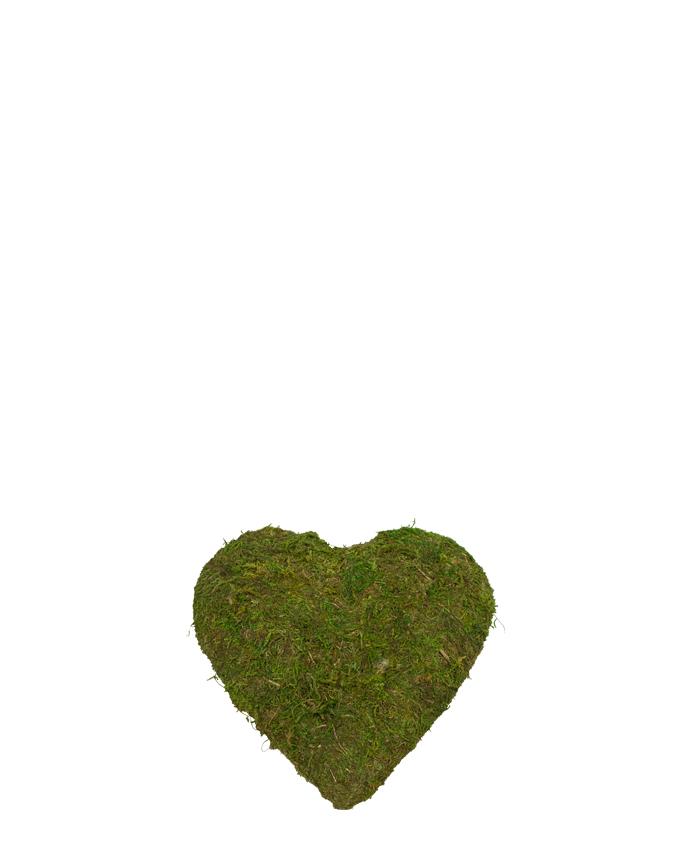 Hjärta - Grönmossa