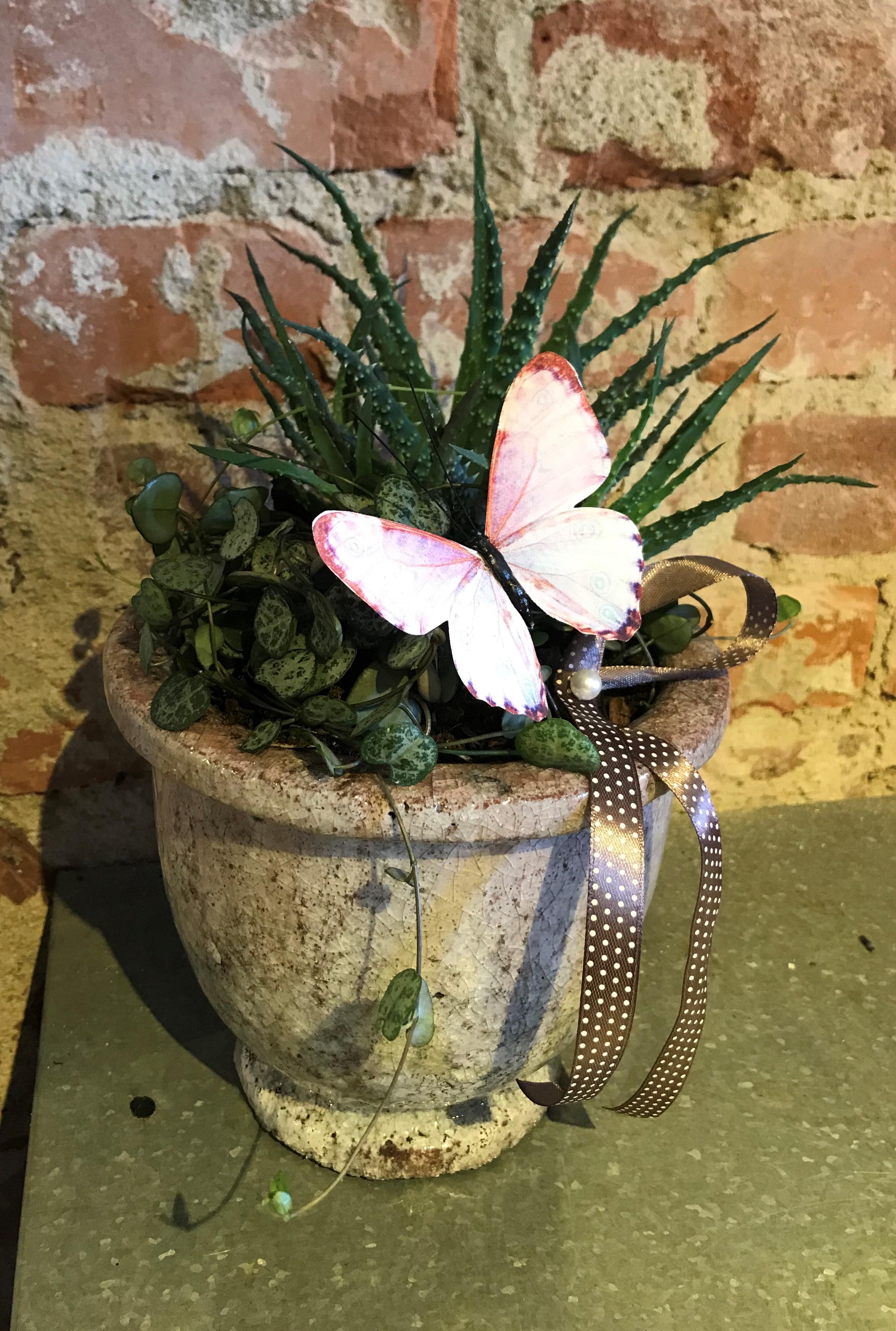 Floristens val - Hållbar plantering