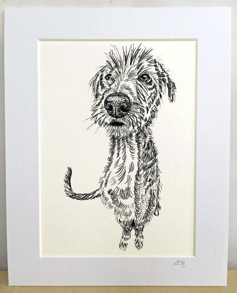 Sarah Cox Artworks SC06 Print Scruffy Dog