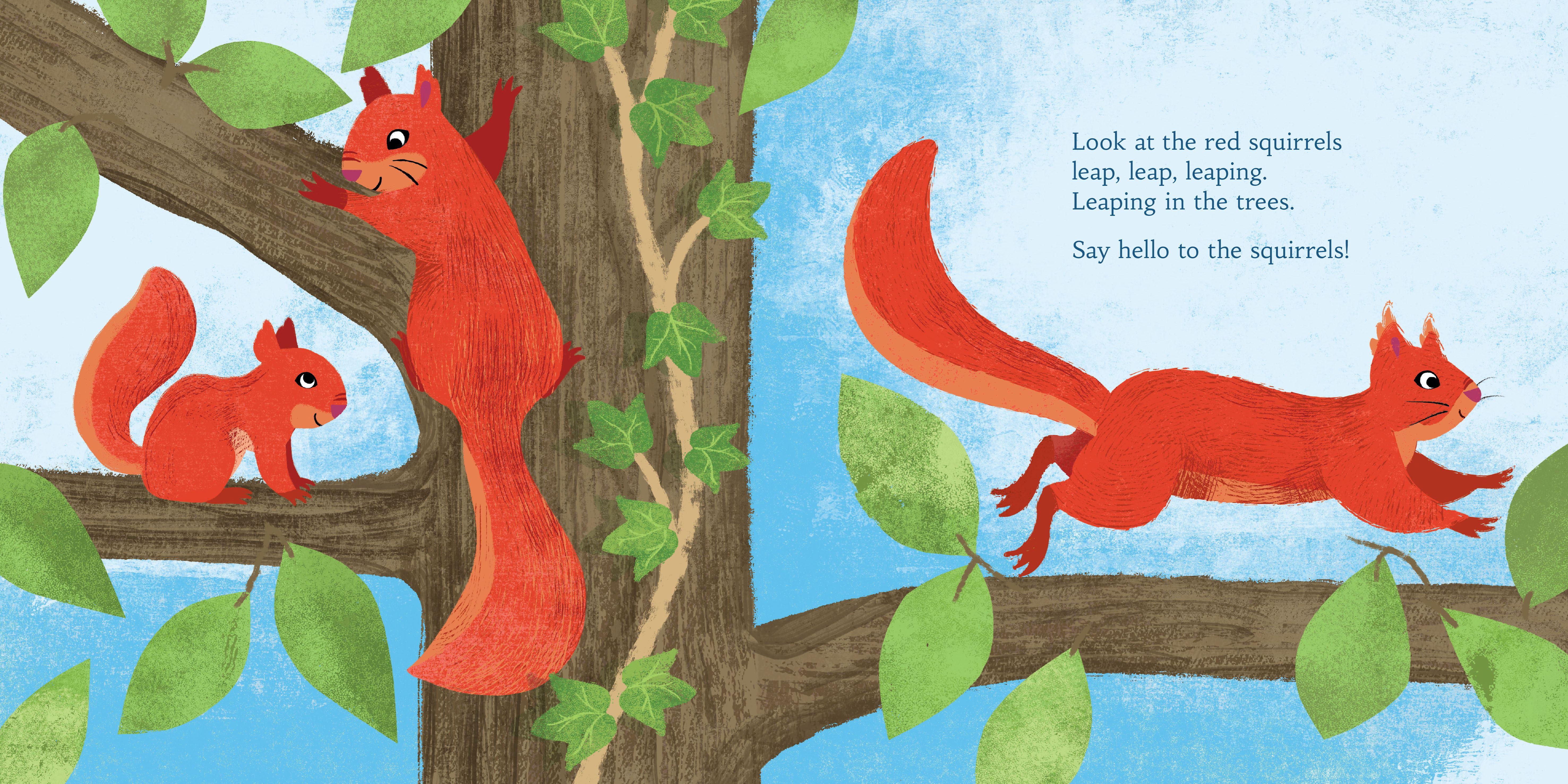 Hello Scottish Animals (Children's Book)