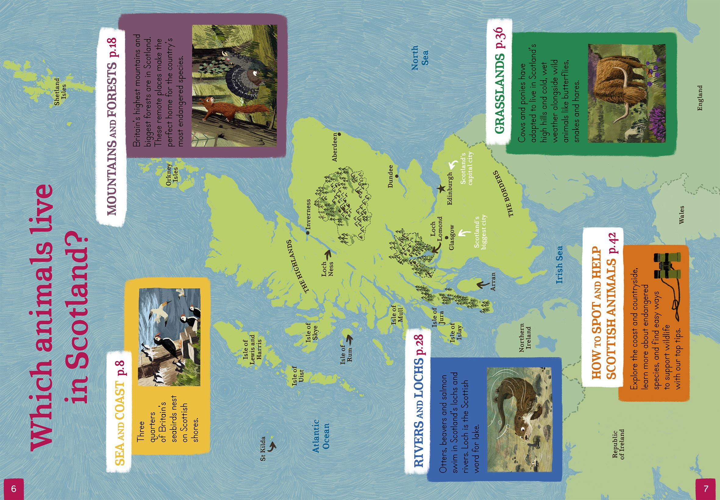 An Amazing Animal Atlas Scotland (Children's Hardback Book)