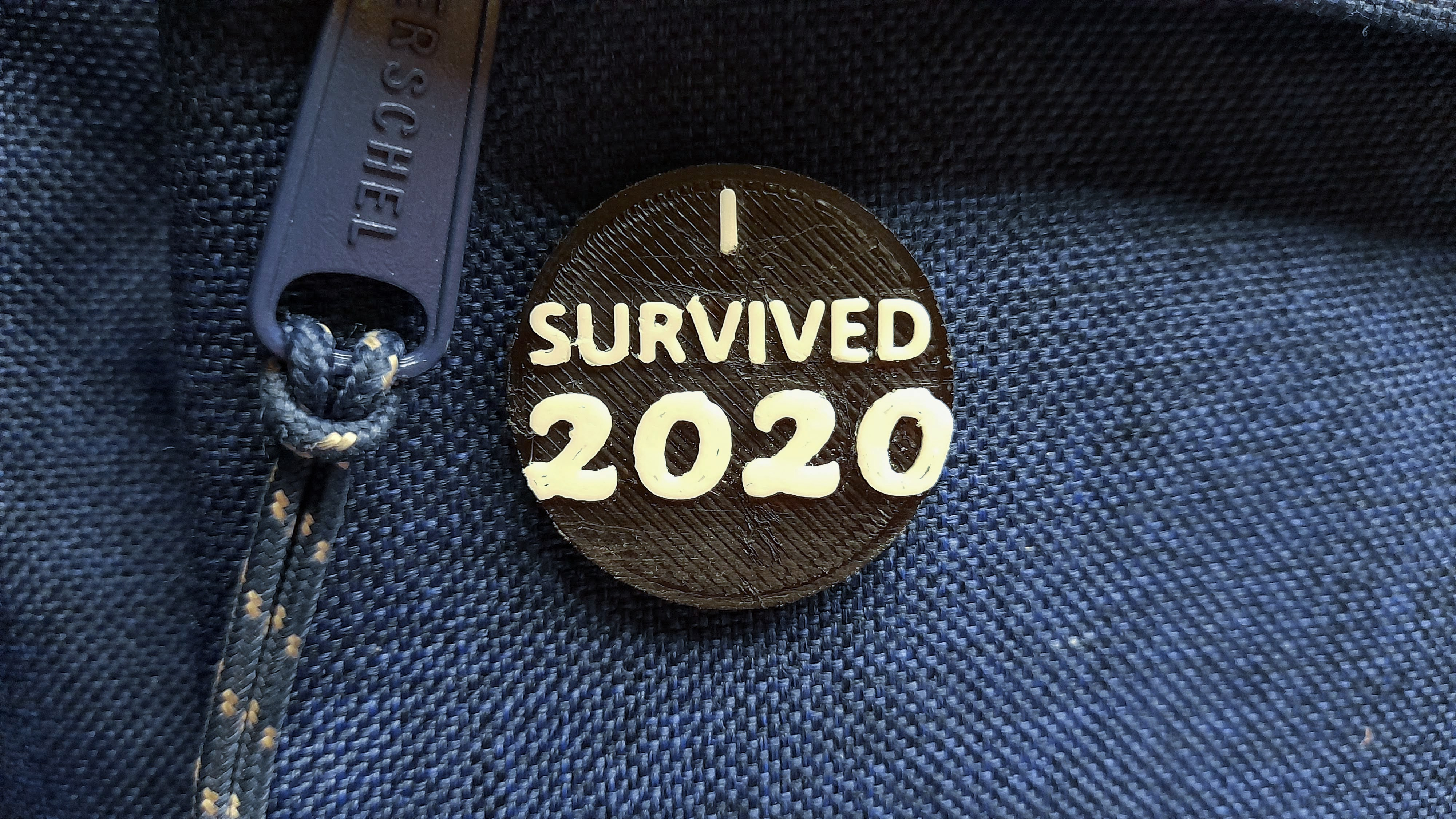 ILovePins I Survived 2020 3D Printed Pin
