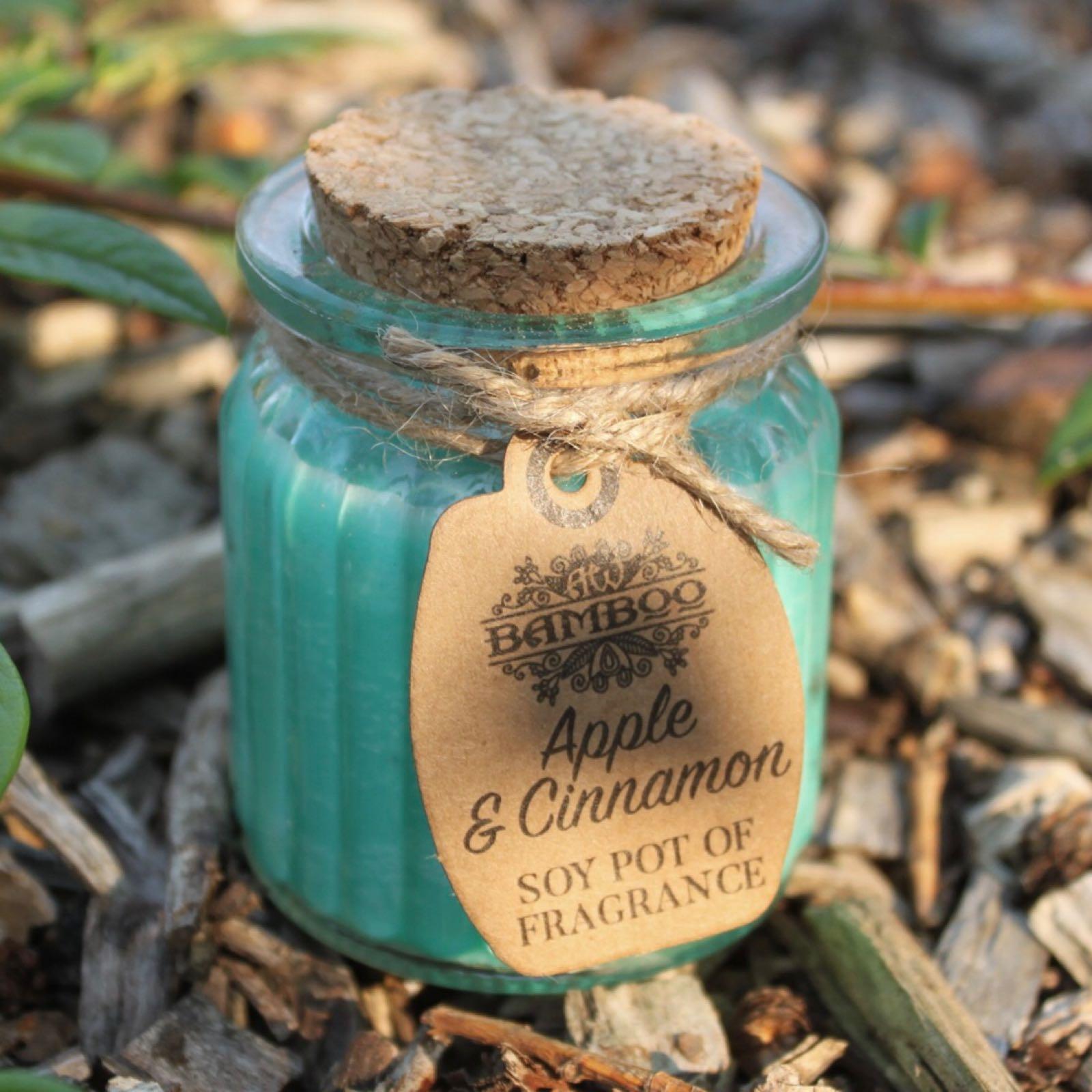 Apple & Cinnamon Soy Pot Candle