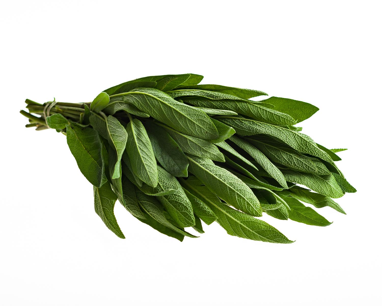Salvia, luomu