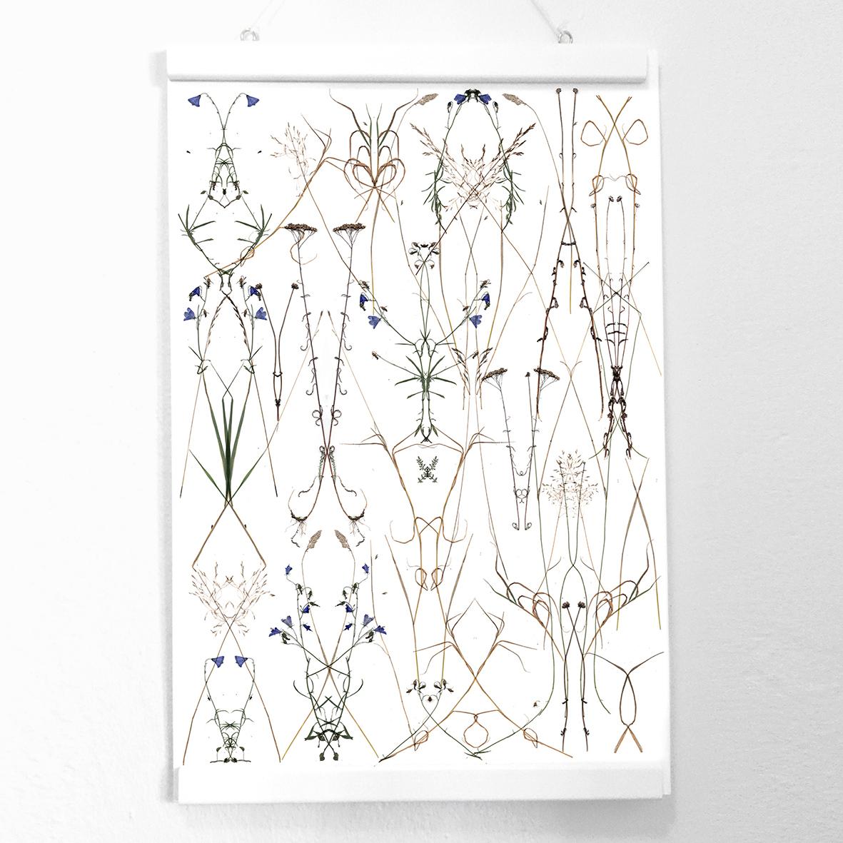 Herbarium Remix