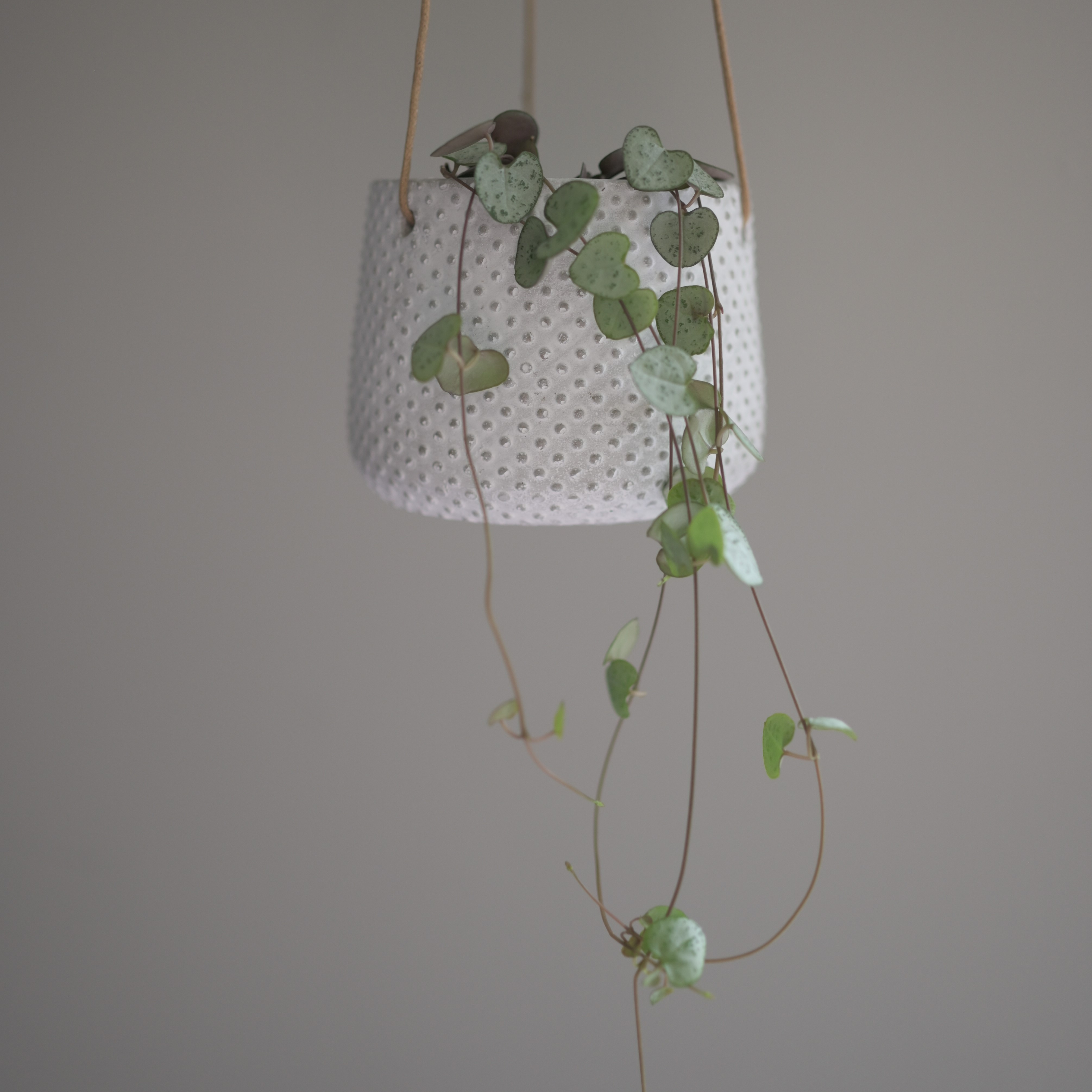 White Dimple Stone Effect Hanging Planter