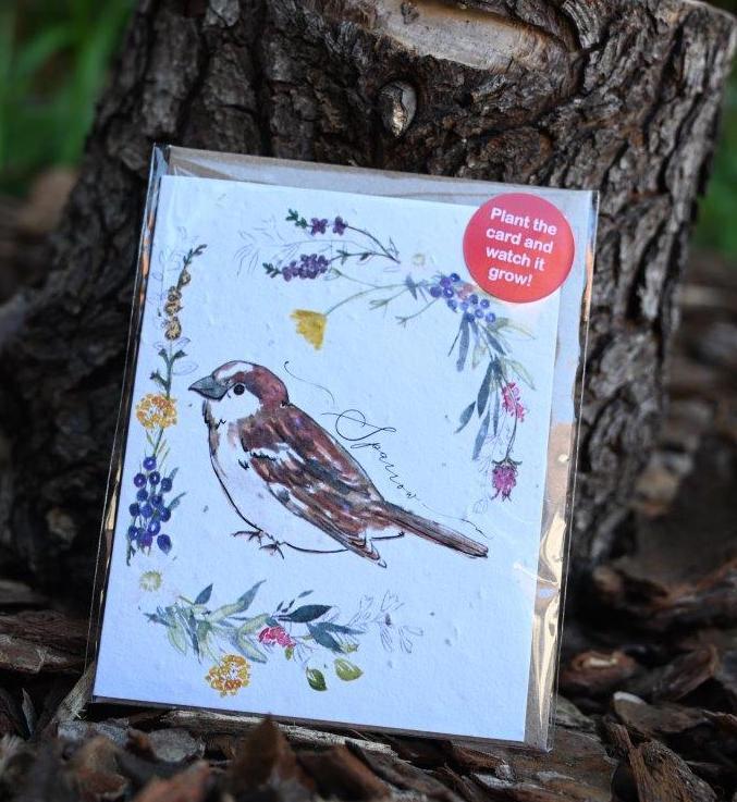 Sparrow Seed Card