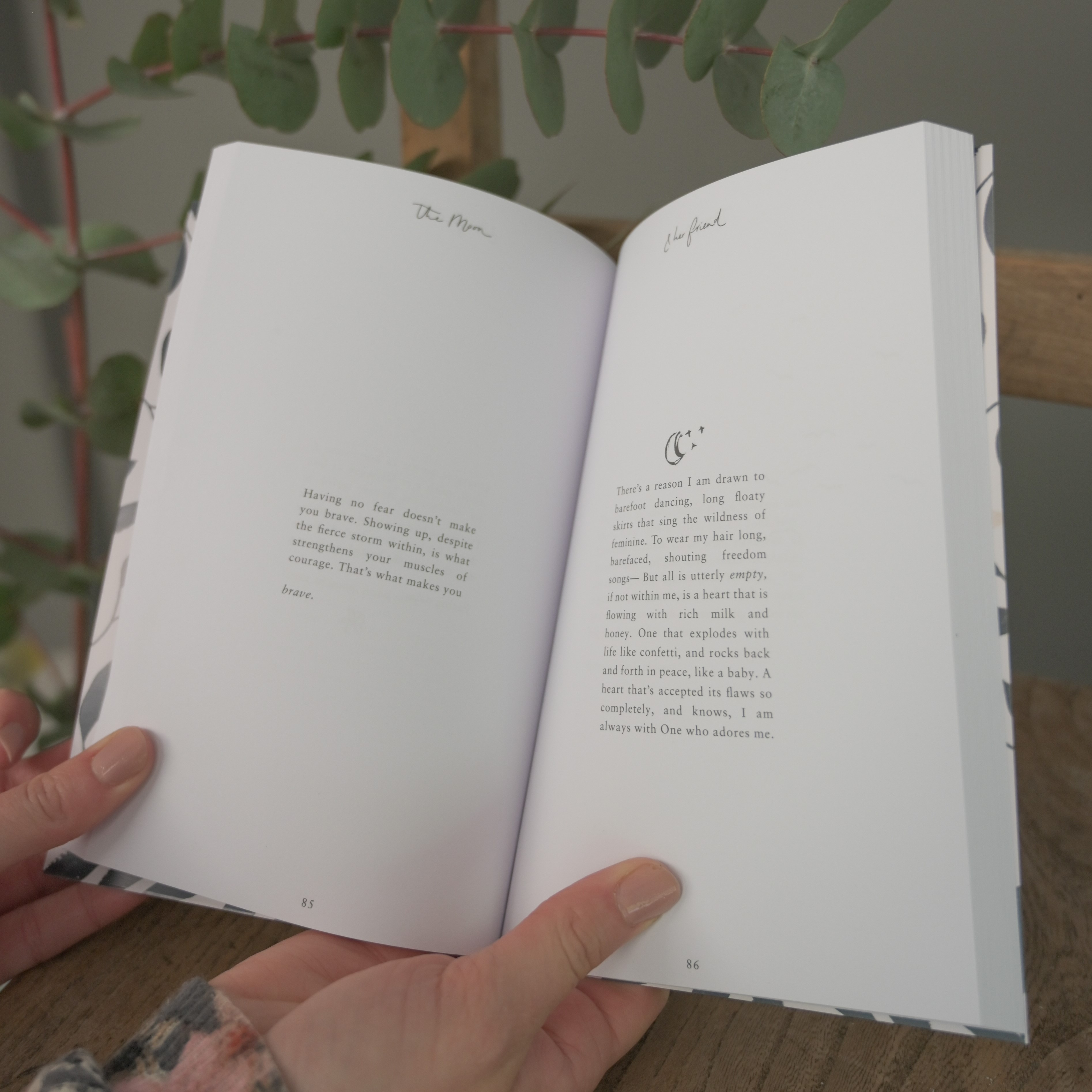 The Moon & Her Friend Book
