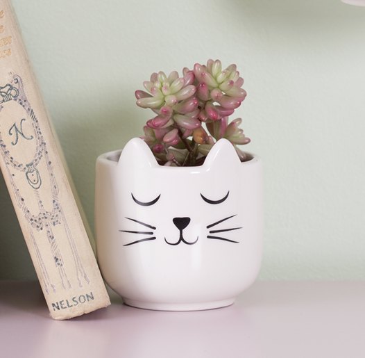 Mini Cat Planter
