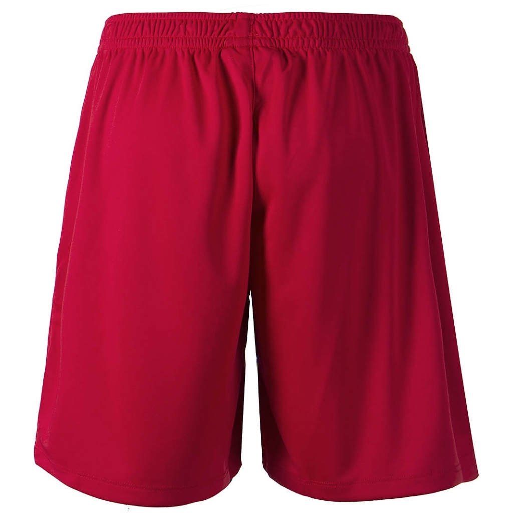 FZ Landos M Shorts