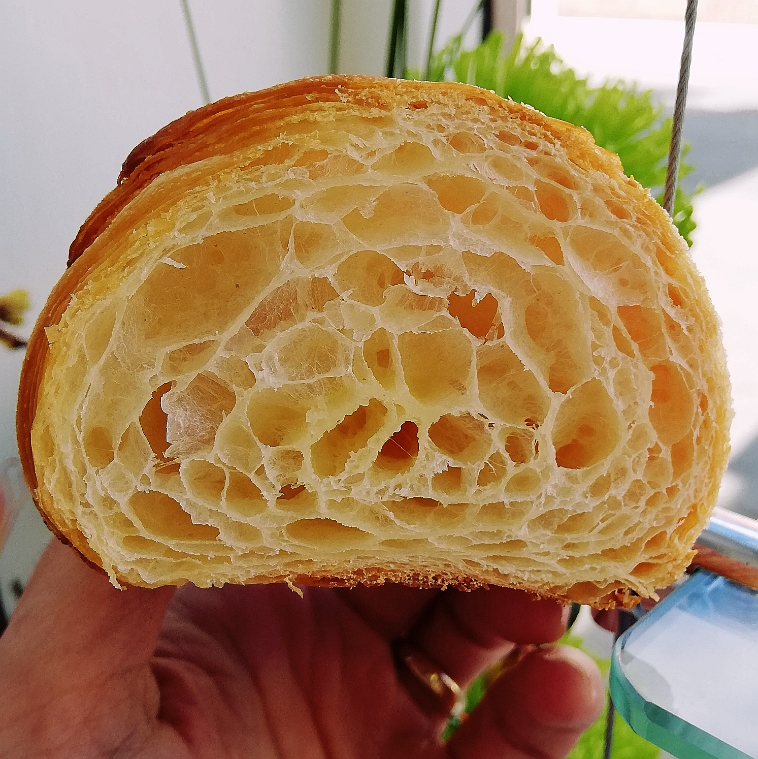 (WED) Croissant