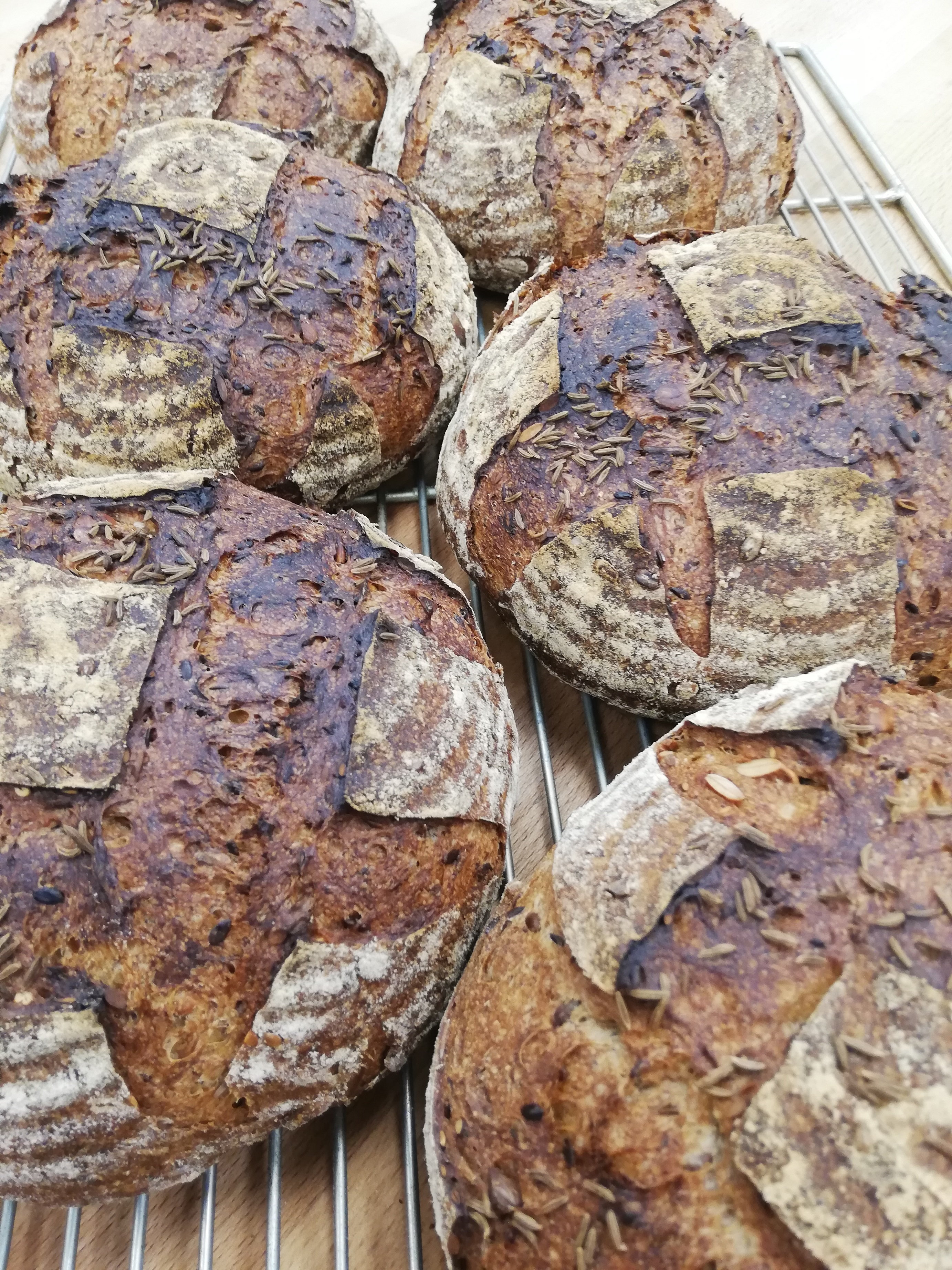 (SAT) Malted Rye, Seeds & Caraway Sourdough