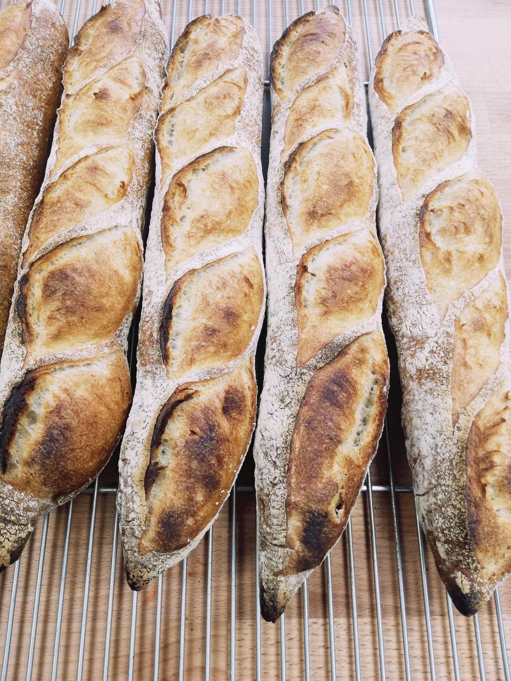 (WED) Baguette de Tradition Francaise