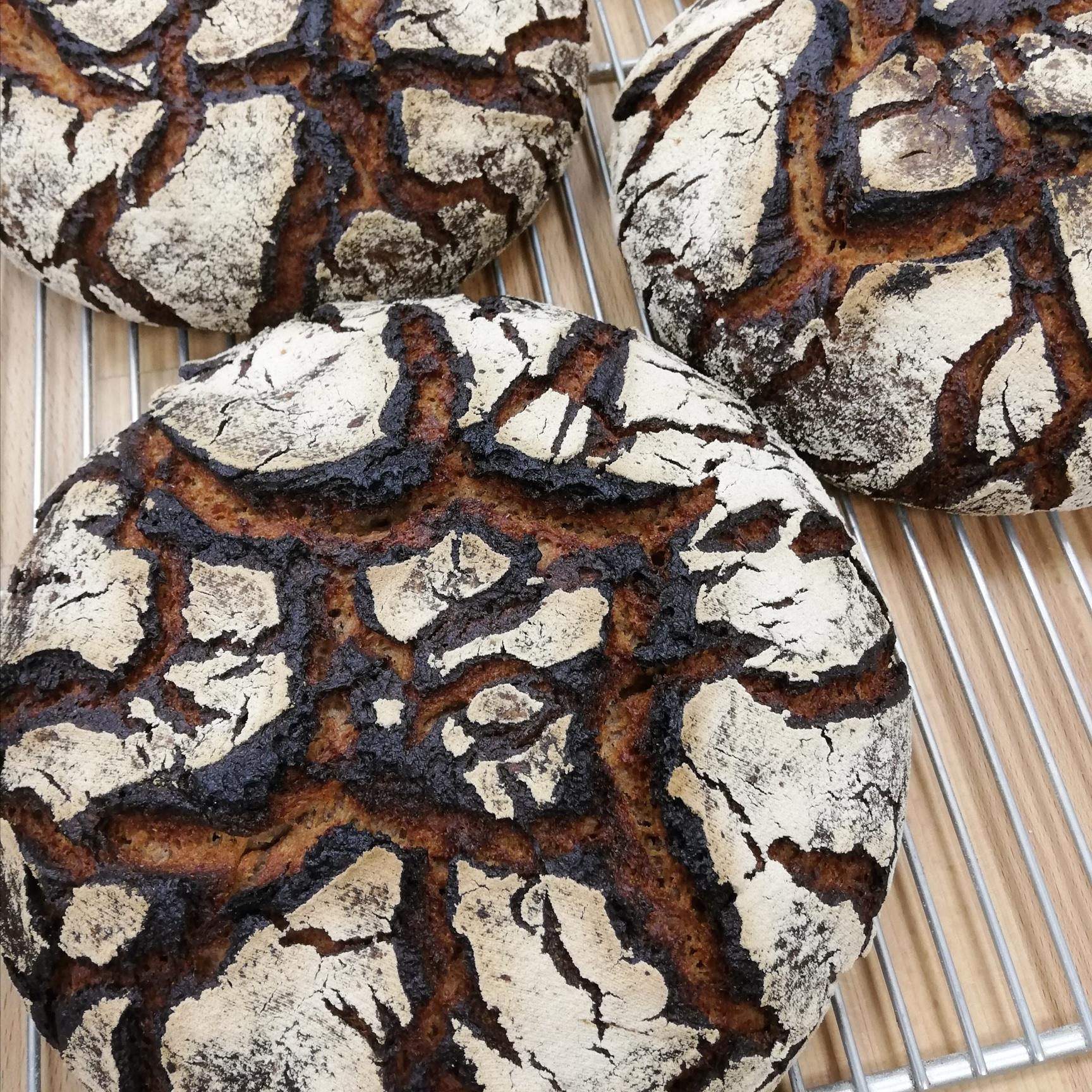 (FRI) Torte de seigle 100% Rye Sourdough