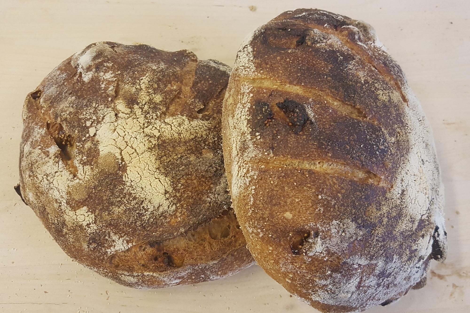 Hasselpähkinä viikuna leipä