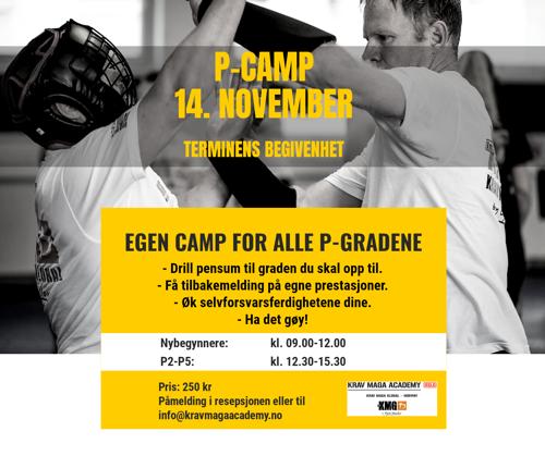 P-camp 14. november
