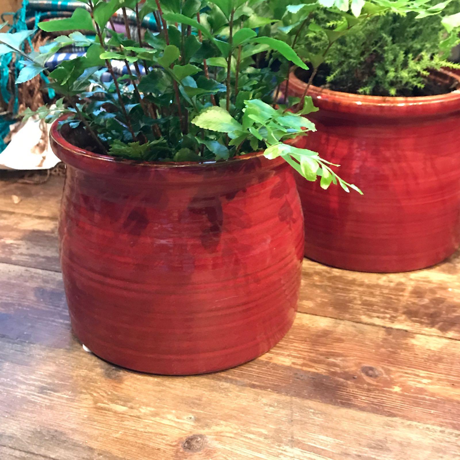 KATHRYN : potte