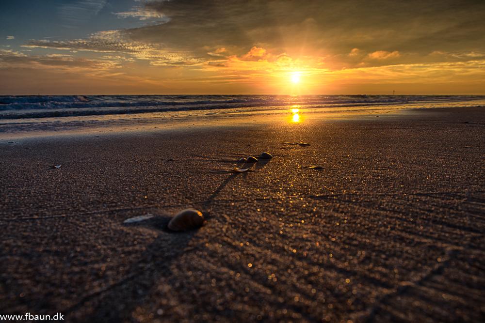 Muslinger i sandet