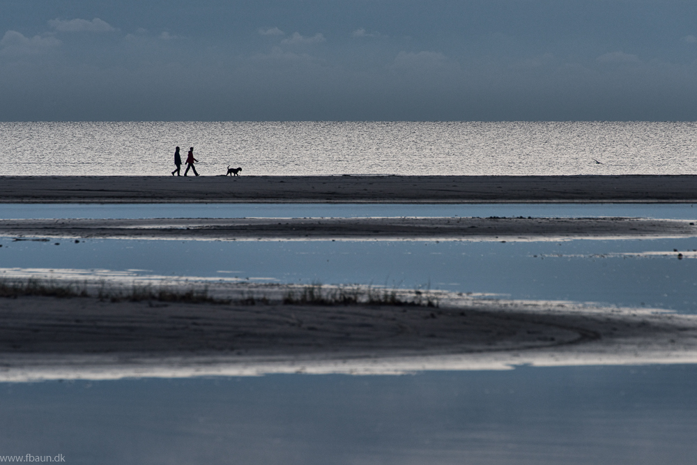 2 mennesker på en strand
