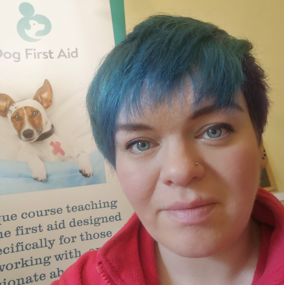 Dog First Aid South Wales