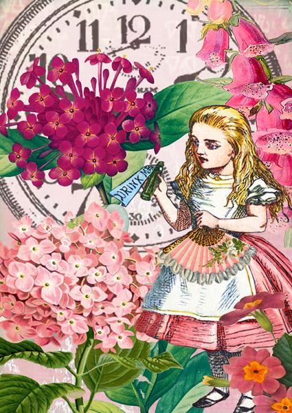 Alice Drink Me Card