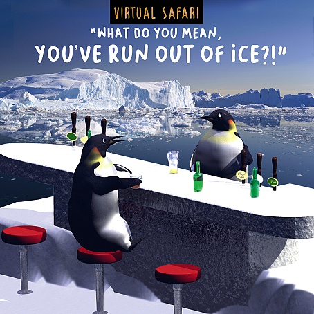 Virtual Safari Ice Card