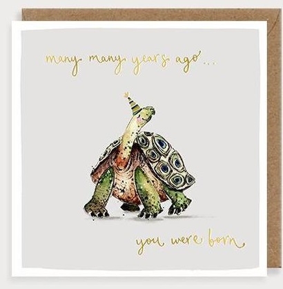 Many Years Ago You Were Born Tortoise Birthday Card